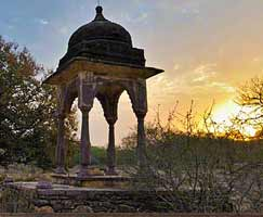 Holiday Package Ranthambore